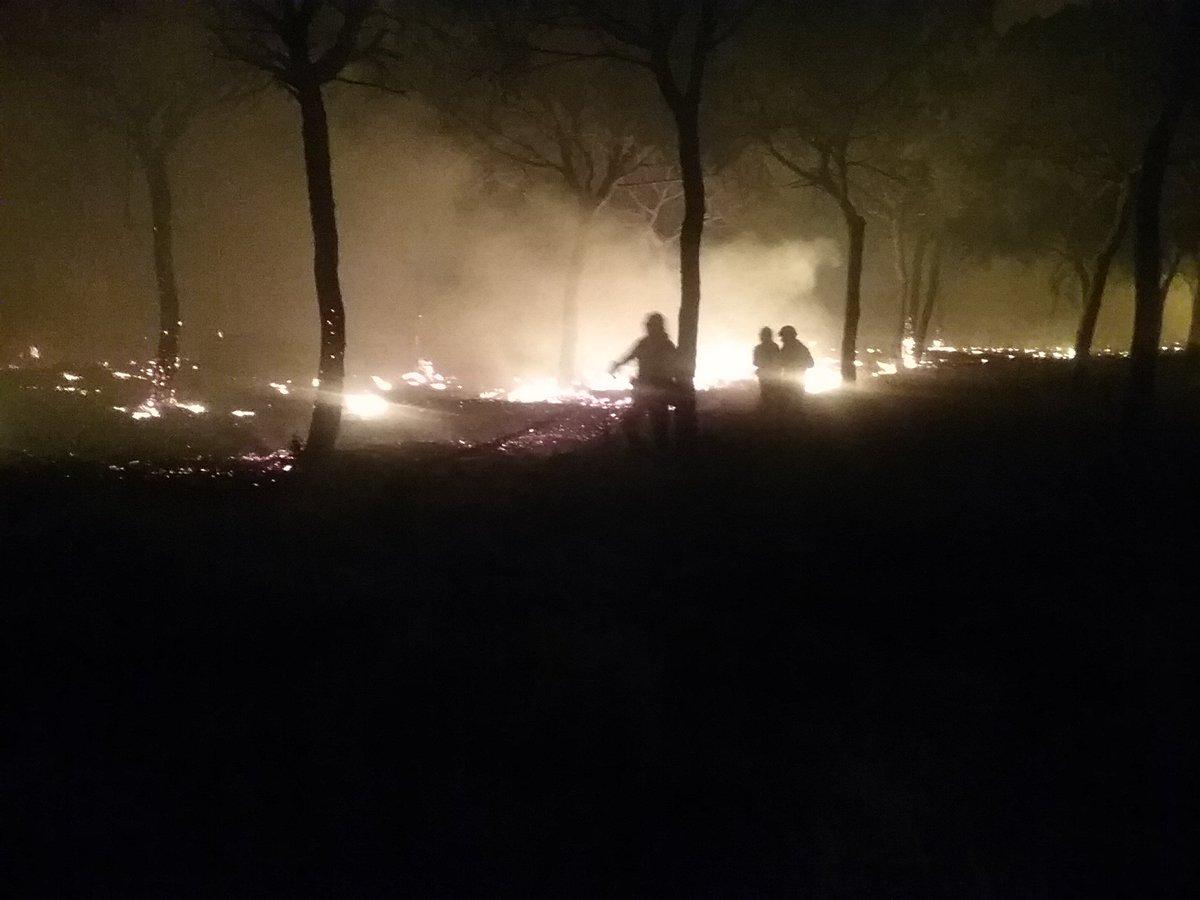 El incendio provocado alcanza Doñana y obliga a desalojar a más de 2.000 personas