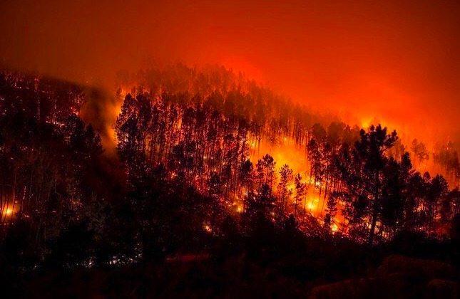 a3c0f679a9 Las hectáreas quemadas por los 276 fuegos de esta oleada de incendios en  Galicia «va a ser superior a toda la ardida durante el año», así lo ha  anunciado la ...