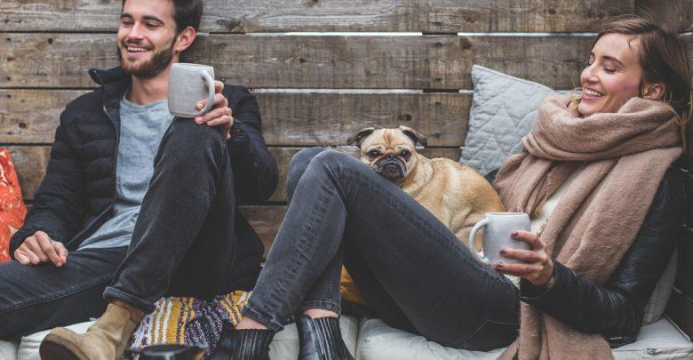 Los síntomas para saber que tu mascota está enferma